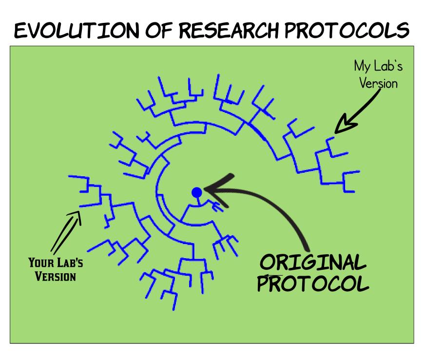 Protocol Evolution.png